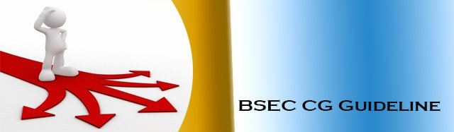 BSEC CG Guideline